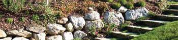 CAPa : Jardinier Paysagiste